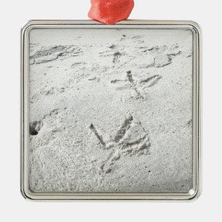 Bird tracks Silver-Colored square decoration