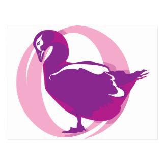 Bird Vector Postcard