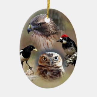 Bird Watcher Collage Ceramic Oval Decoration