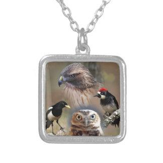 Bird Watcher Collage Pendants