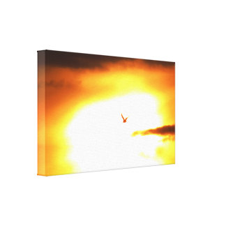 Bird With The Sun Canvas Print