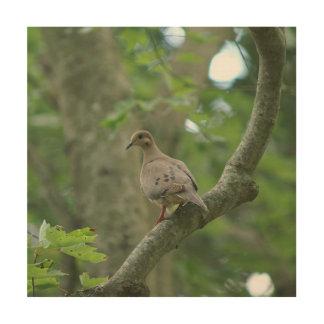 Bird, Wood Photo Print. Wood Wall Art