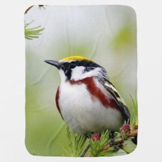 Bird yellow blanket buggy blankets