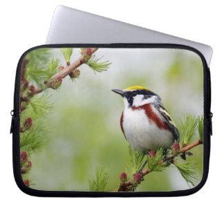 Bird yellow_funda laptop sleeve
