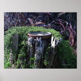 Birdbath on Tree Stump Poster