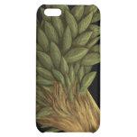 BirdBloom iPhone Case iPhone 5C Covers