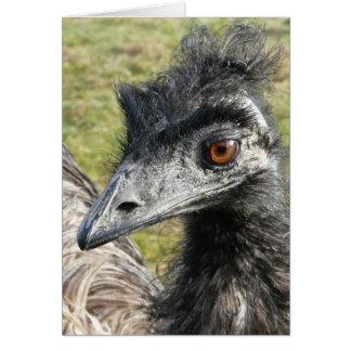 Birdbrained Emu Card