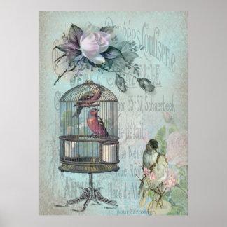 Birdcage Blossom Poster