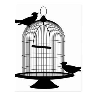 Birdcage Postcard