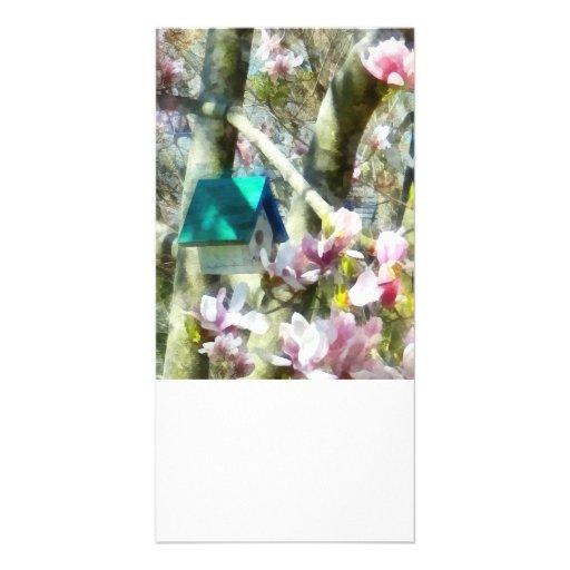 Birdhouse in Magnolia Photo Greeting Card