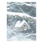 birdhouse in the snow postcards
