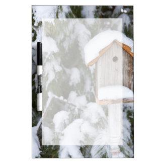 Birdhouse near pine tree in winter dry erase whiteboard