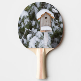 Birdhouse near pine tree in winter ping pong paddle