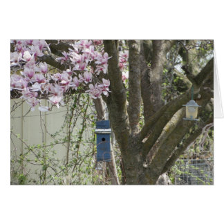 Birdhouse & Tulip Tree, Spring Card