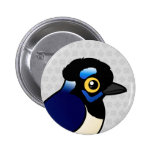 Birdorable Plush-crested Jay Pin
