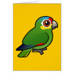 Birdorable Red-lored Parrot