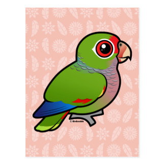 Birdorable Vinaceous Parrot Postcard