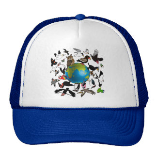Birdorables Around the World Hats