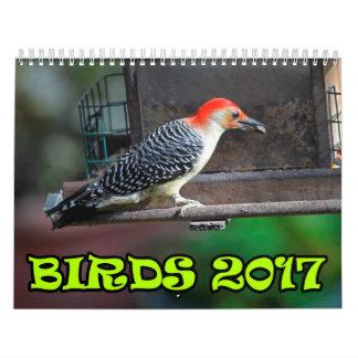 Birds 2017 wall calendar