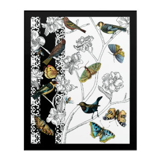 Birds and Butterfly on a Black & White Background Acrylic Print
