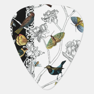 Birds and Butterfly on a Black & White Background Guitar Pick