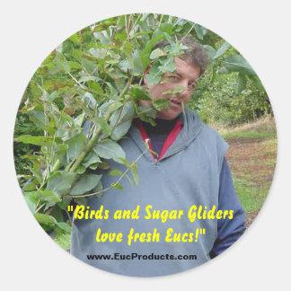 """""""Birds and Sugar Gliders love fresh Eucs!... Round Sticker"""