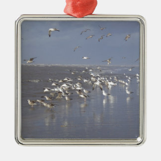 Birds at the Waters Edge Silver-Colored Square Decoration