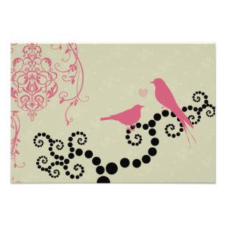 Birds, Dots, Heart, Branches, Swirls - Black Pink Photo