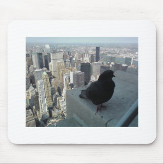 Bird's Eye View of New York Mouse Pad