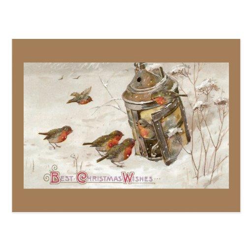 Birds Find Shelter in Lantern Vintage Christmas Postcards