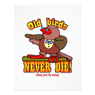 Birds Flyers