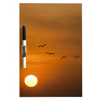 Birds flying in sunset dry erase whiteboards