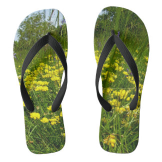 Birds-foot Trefoil Flip Flops