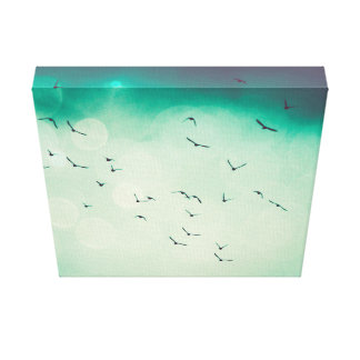 Birds in flight .. canvas print
