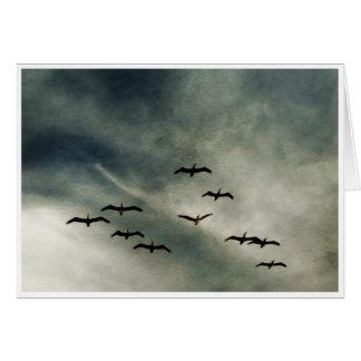 Birds in Flight Card