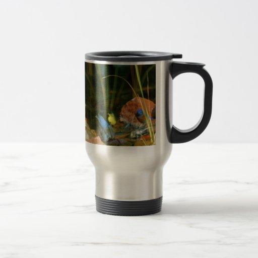 birds in stream mug