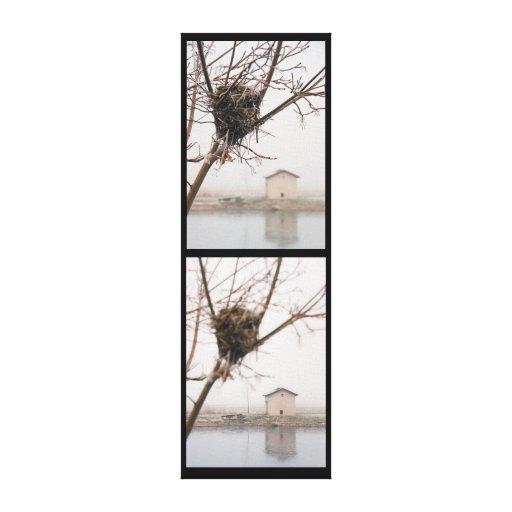 Bird's Nest Diptych Stretched Canvas Print