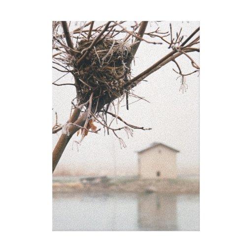 Bird's Nest Home Canvas Print
