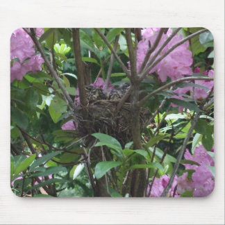 Bird's Nest in Rhododendron Bush Mouse Pads