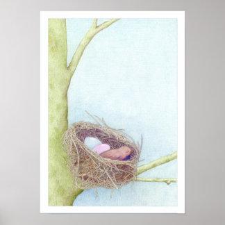 Birds Nest Posters