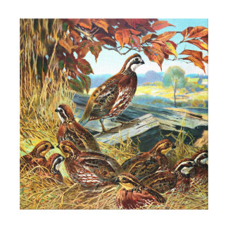 Birds Nesting Vintage Painting Stretched Canvas Prints