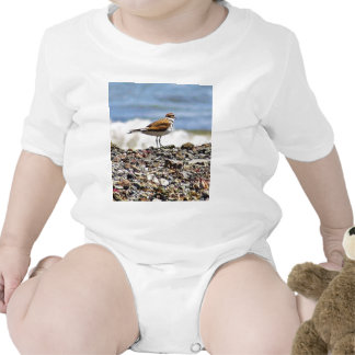 Birds Oceans Beaches Tees