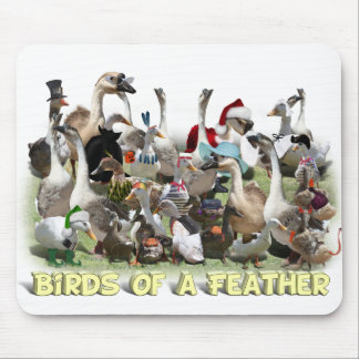 Birds of a Feather Mouse Pad