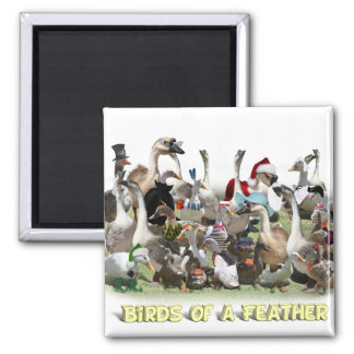 Birds of a Feather Square Magnet