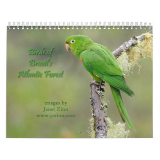 Birds of Brazil's Atlantic Forest Calendar