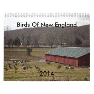 Birds Of New England 2014 Calendar