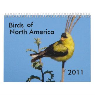 Birds of North America 2011 Wall Calendar