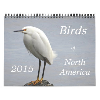 Birds of North America - 2015 Calendars
