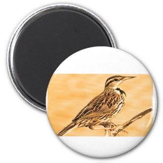 Birds of Ontario Kids Children Zoo Nature School Magnets