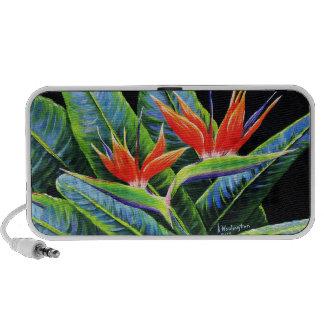 Birds of Paradise iPod Speakers